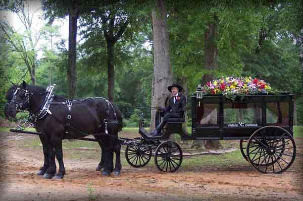 American Carriage Works - Horse Drawn Hearse